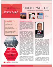 stroke matters cover fall13