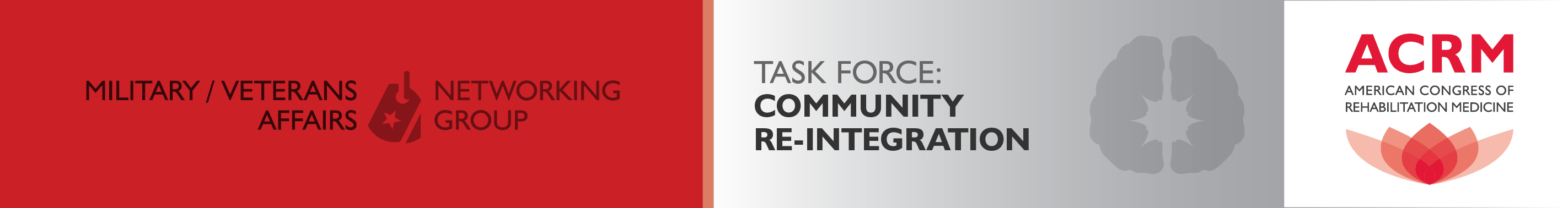 Military / Veterans Affairs Community Re-Integration Task Force banner