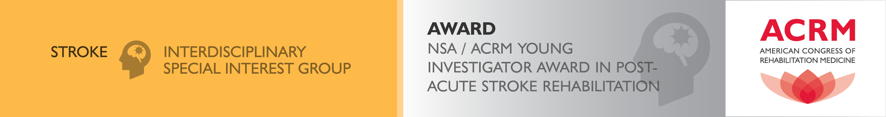 Award NSA / ACRM Young Investigator Award in Post-Acute Stroke Rehabilitation