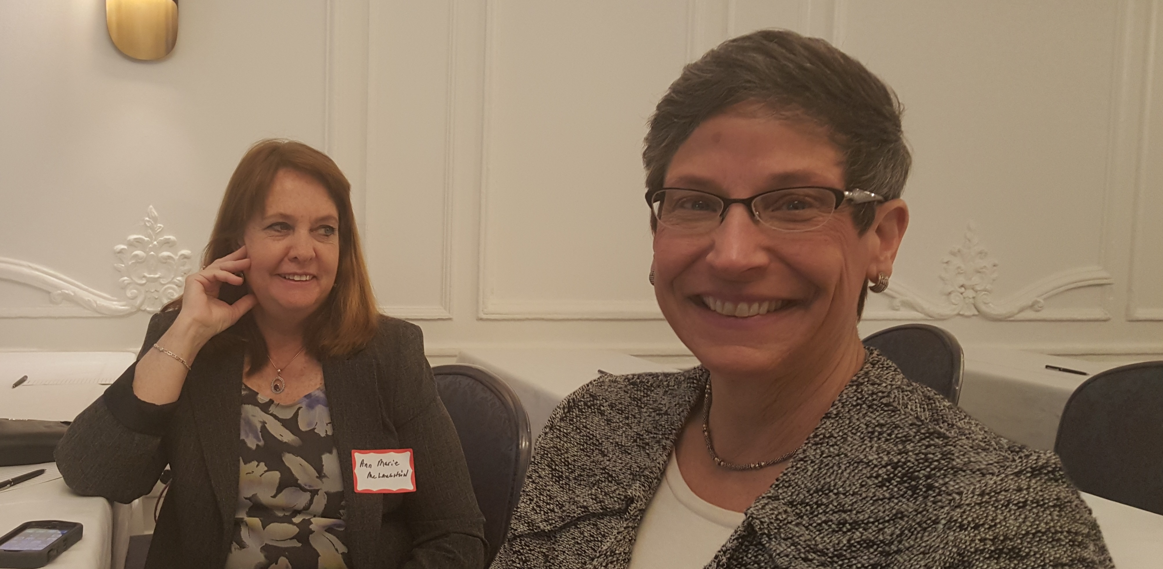 Ann Marie McLaughlin (left) and Nina Geier, 2016 Mid-Year Meeting, Chicago
