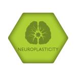 ACRM Neuroplasticity Group