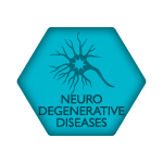 ACRM Neurodegenerative Diseases Networking Group icon