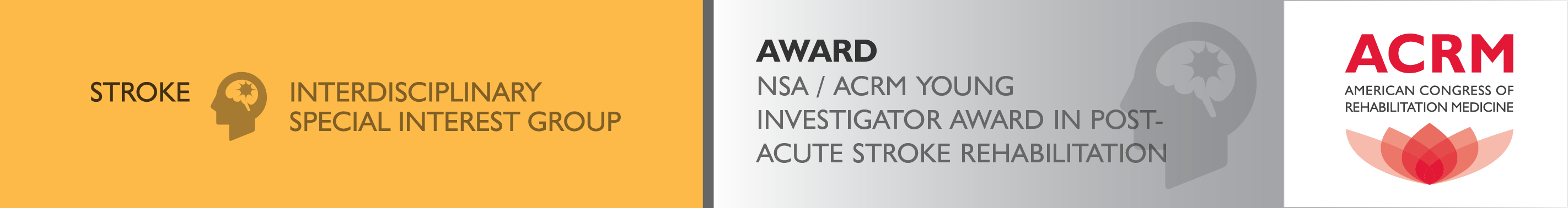 Award NSA / ACRM Young Investigator Award in Post-Acute Stroke Rehabilitation