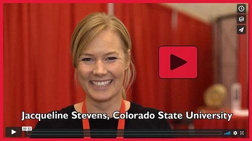Stevens Video