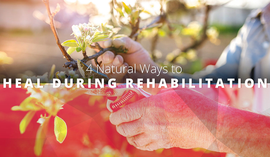 rehabilitation medicine ways to naturally heal and relieve pain
