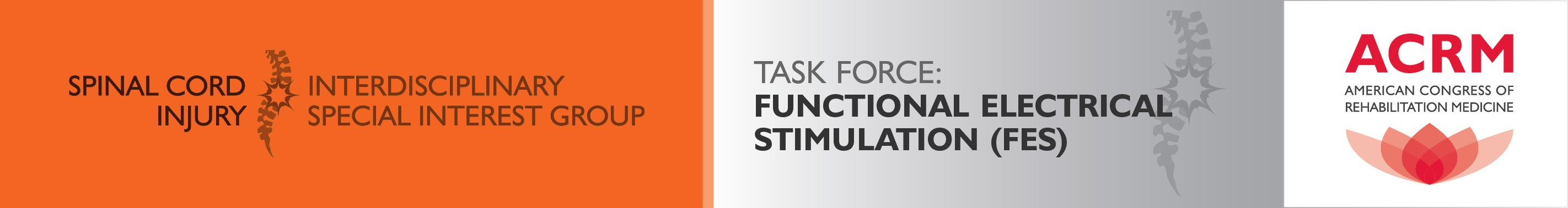 SCI-ISIG Functional Electrical Stimulation & Technology Task Force banner